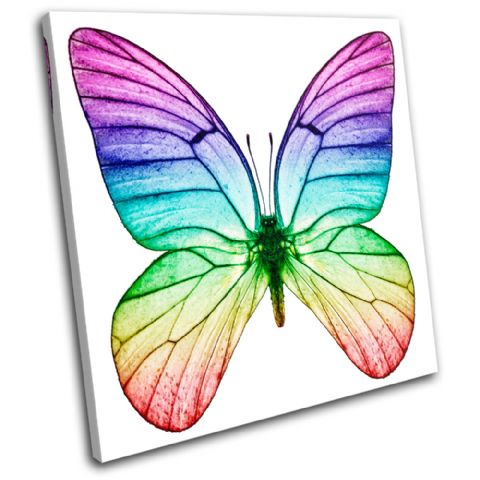 Butterfly Animals - 13-0826(00B)-SG11-LO